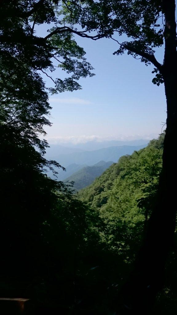 雲取山下山中